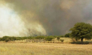 Volvieron los incendios rurales