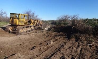 Trabajos de picadas en el sur de La Pampa