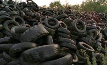 Argentina: Jujuy usará neumáticos usados para producir cemento