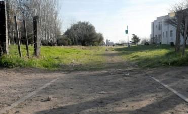 EL TREN EN LA PAMPA, MAS CERCA DE DESAPARECER