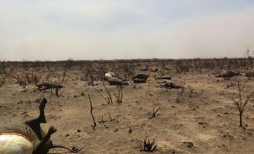 El fuego en la zona de Chacharramendi se reavivó durante la jornada de hoy y sigue sin poder ser controlado