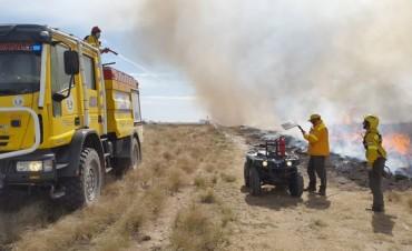 Se quemaron 2500 hectáreas de bosque nativo en la zona de Utracán