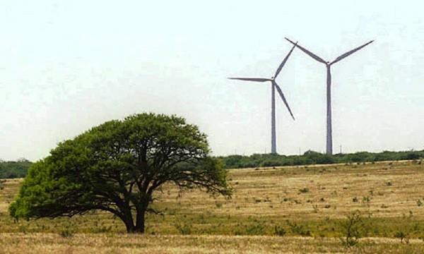 Parque eólico en Acha