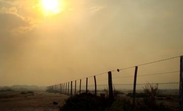 Los incendios que han arrasado con miles de hectáreas han generado bronca
