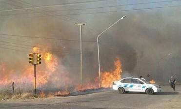 Incendios en Cuyo
