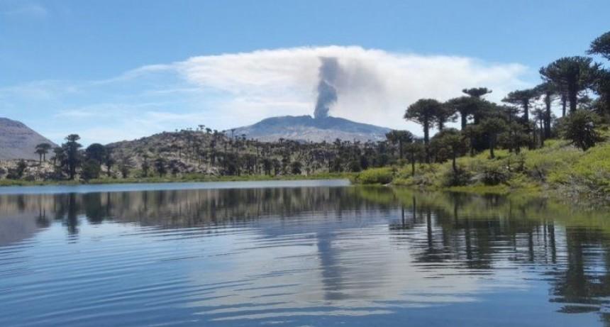 Sismo en Neuquén: 3.2 puntos de magnitud