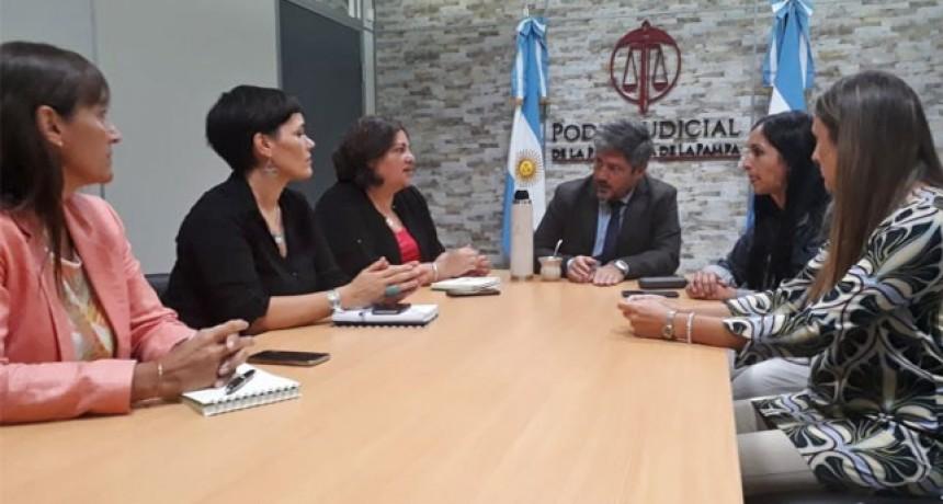 La Pampa: el 52 % de los detenidos es por violencia de género