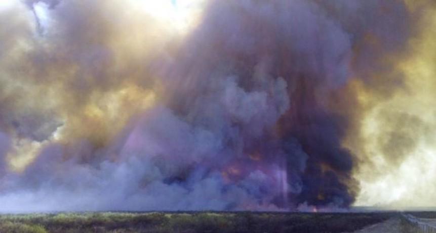 Controlan un incendio cerca del Río Colorado