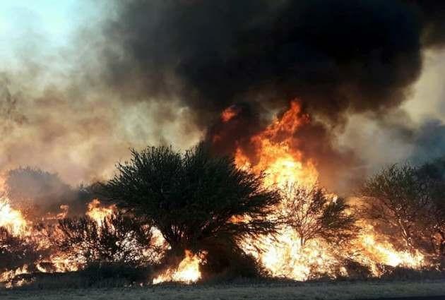 Se detectaron esta madrugada cuatro nuevos focos de incendios en la provincia