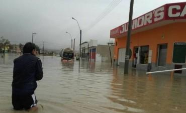 Desde el municipio de Comodoro Rivadavia