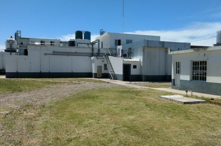 La cooperativa de trabajo Frigorífico Uriburu Limitada cerró sus puertas