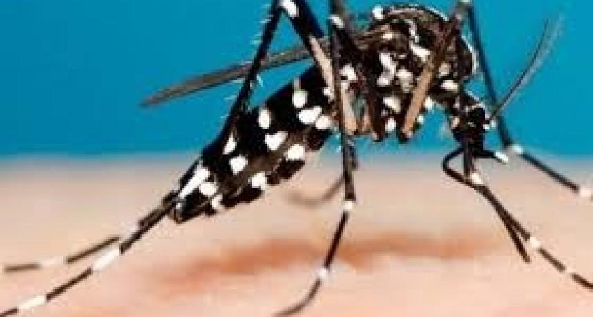 Ya son 2.942 los casos de dengue y 158 los de sarampión en la Argentina