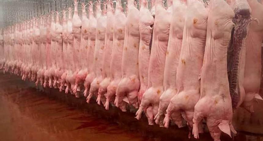 La Pampa prohíbe la carne de cerdo de EE.UU.