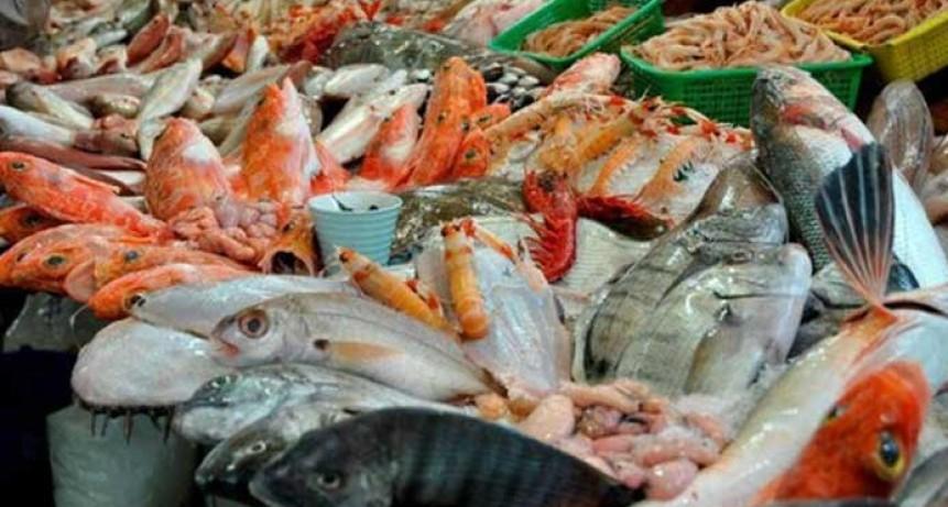 Así están los precios del pescado en Bahía a 15 días de Semana Santa