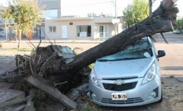 SALLIQUELÓ Graves daños produjo un temporal durante la madrugada