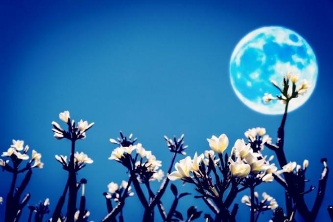 Qué es y cómo observar la Luna de Las Flores