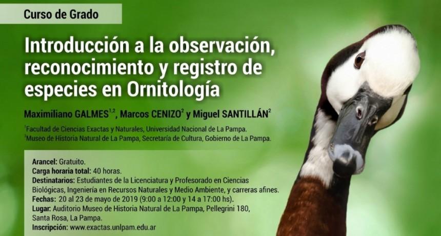 """Museo de Historia Natural de La Pampa Curso de Grado - """"Introducción a la observación, reconocimiento y registro de especies en Ornitología"""""""