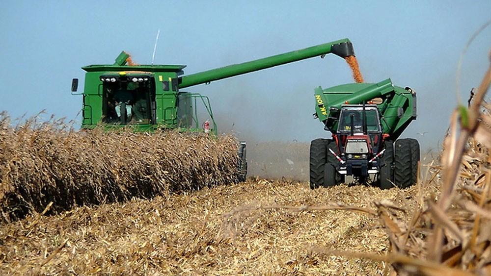 La cosecha 2018-2019 es récord y el maíz supera a la soja