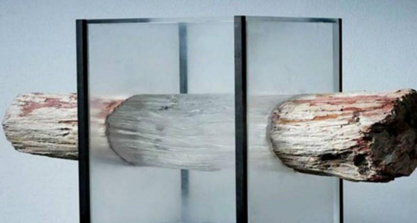 Crearon la madera transparente