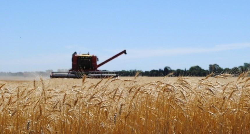 Vence la segunda cuota del impuesto Inmobiliario Rural