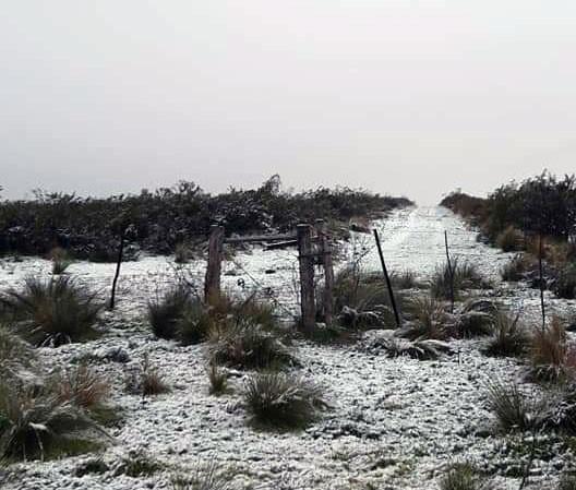 La ola polar hizo que nieve en Puelches