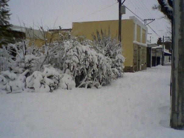 Pronostican una fuerte ola polar en Buenos Aires