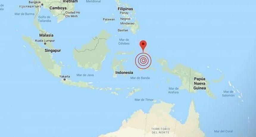 Fuerte terremoto en Indonesia