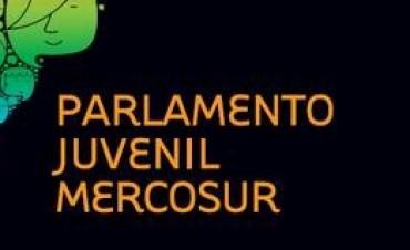 De Toay al Parlamento Juvenil del MERCOSUR