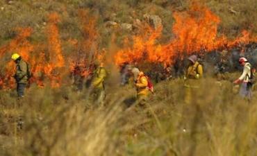El trabajo de los bomberos en la zona de Los Molles