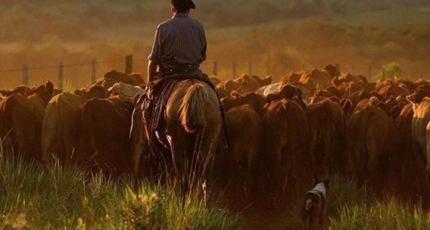 Aumenta el sueldo de los trabajadores rurales
