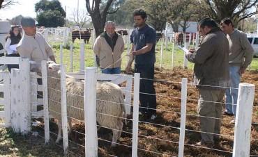 84º Exposición de la Sociedad Rural de General Pico