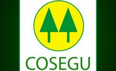 La CoSeGu invita a toda la comunidad