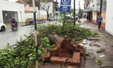 Hubo vientos de hasta 120 kilómetros por hora e inundaciones en Posadas