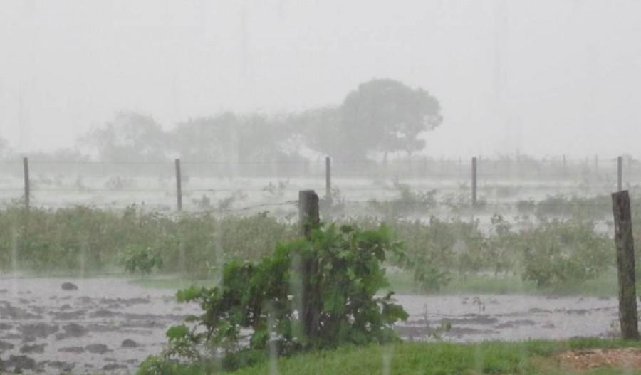 Cayeron 100 milímetros en Caleufú