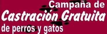 CASTRACIÓN DE MASCOTAS EN SANTA TERESA