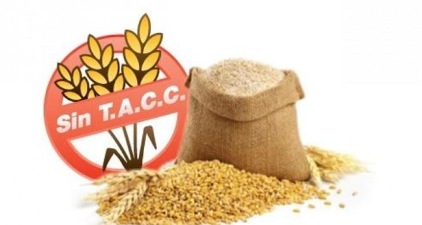 Obtienen aglutinante para alimentos sin TACC de la flora autóctona en San Luis