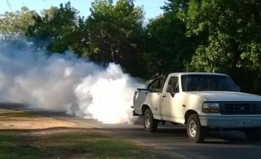 Fumigacion en Darregueira