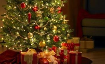 Por qué el árbol navideño se arma el 8 de diciembre