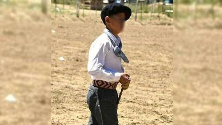 Un domador de 14 años murió aplastado por un caballo