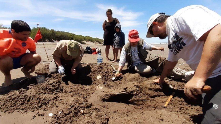 Un turista halló restos fósiles en el balneario de Pehuén Có