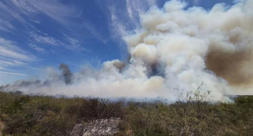 Incendio en campos de Chacharramendi queman 2.800 hectáreas